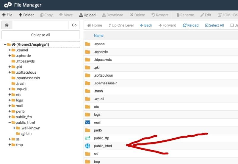 cPanel public html directory