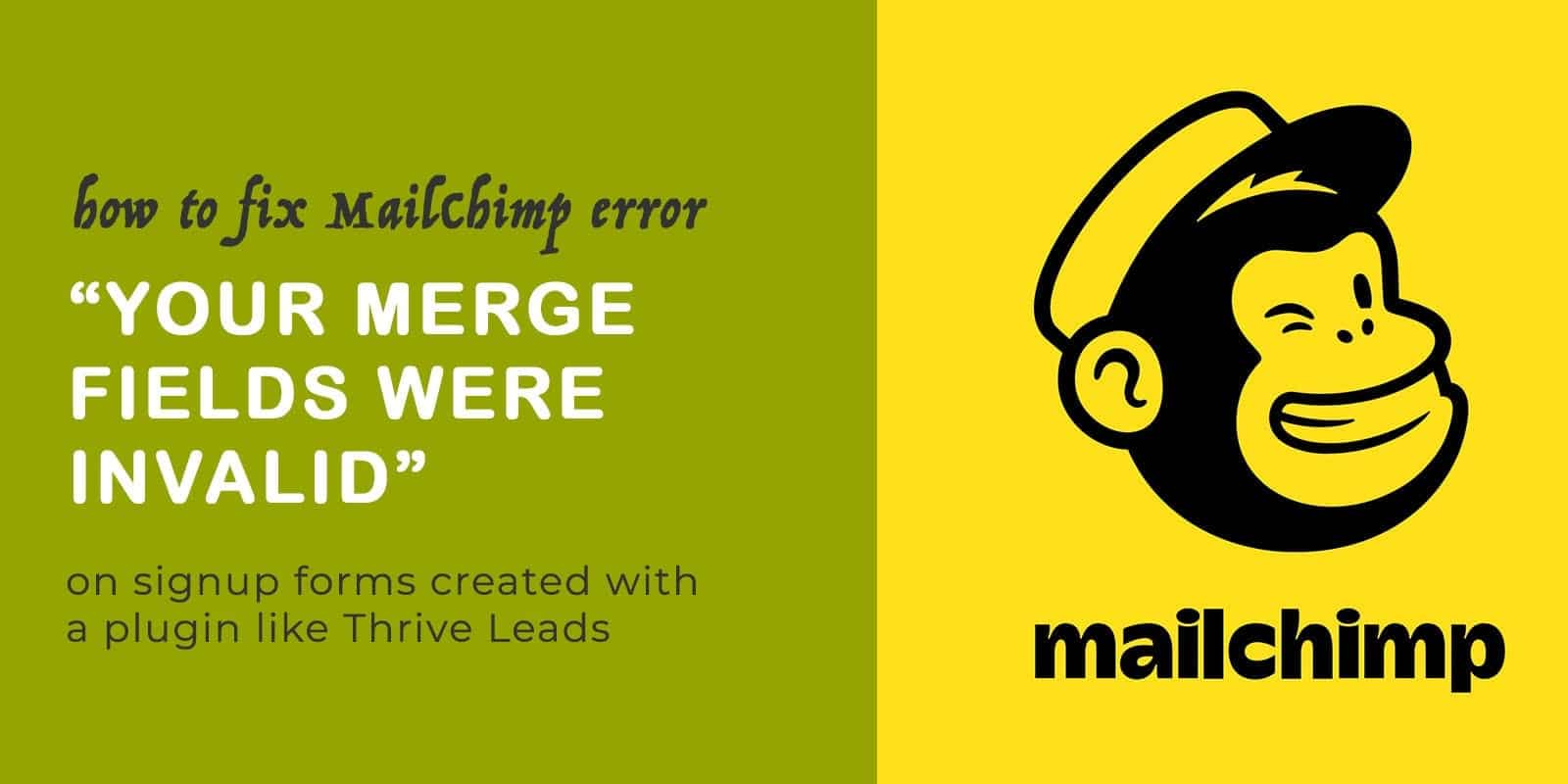 mailchimp logo with your merge fields were invalid text
