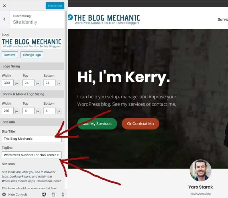 Screenshot: changing site title with the theme customizer